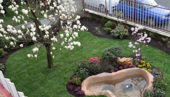Vivaio il germoglio vinovo torino for Esempi di giardini