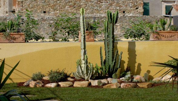 Vivaio il germoglio vinovo torino for Foto angoli giardino